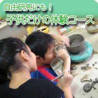 粘土遊びが得意な子供たちのプラン